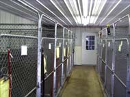 Inside kennel accomodations